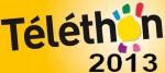 telethon-2013-2